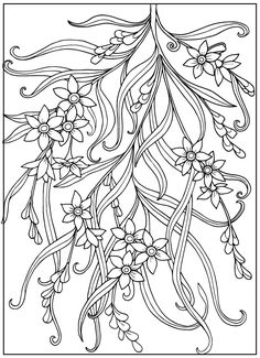 Coloring Book For Adult And Older Children Page With Vintage Flowers Outline Drawing