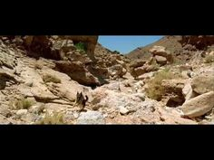 The Hills Have Eyes (Full Movie) http://www.shortform.com/amberdawn/themoviechannel/watch