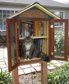 Little Free Library complete with its own library cat! | #cats #libraries…
