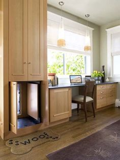 Great idea! Hidden dog door behind cabinets!