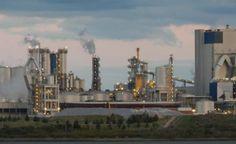 LOS PRINCIPIOS: Uruguay: Tres departamentos tras la nueva planta d...