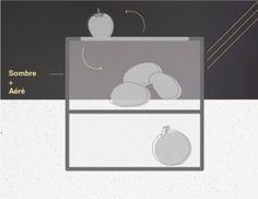 la section sombre  A entreposer : pommes, pommes de terre, patates douces, ail, oignons, échalotes. Dans le premier compartiment de cette partie sombre, on conserve les pommes de terre. Juste au dessus, on y dépose les pommes, où un espace d'aération a été prévu pour créer un échange d'air entre ces deux aliments qui ont la propriété d'aider leur conservation mutuelle. Dans un second compartiment, on conservera l'ail, les oignons et les échalotes.