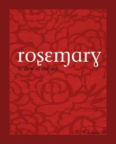 Baby Girl Name: Rosemary. Meaning: Dew Of The Sea. Origin: Latin; English. http://www.pinterest.com/vintagedaydream/baby-names/