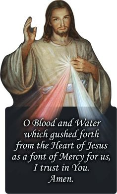 Divine Mercy prayer Jesus wants associated with the Image of the Divine Mercy (Diary, 187).