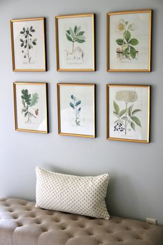 Gold Frames, Botanicals & Photo Mats I first located these frames when I created a botanical gallery wall in our guest room tour here and photos b. Botanical Gallery Wall, Botanical Bedroom, Framed Botanical Prints, Botanical Interior, Framed Prints, Gold Frame Wall, Frames On Wall, Gold Frames, Framed Wall Art