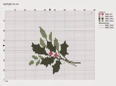 Agrifoglio by luli