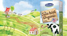 Картинки по запросу sữa tươi organic vinamilk