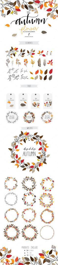 Autumn flower Vector set II by beerjunk on @creativemarket