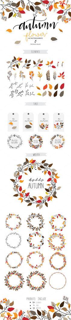 Autumn flower Vector set II by beerjunk on @creativemarket