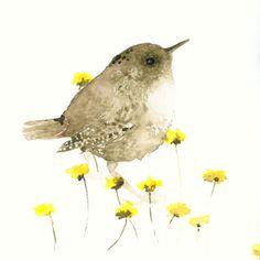Bird Art Print from Original Watercolor  Wren by dearpumpernickel, $18.00