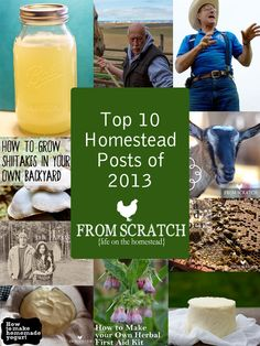 The Top 10 Homesteading Posts of 2013.