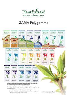 Gemoterapia - Laboratoarele PlantExtrakt, gama Polygemma