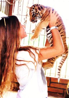 I am so jealous!!! (actually, I have held a baby tiger before, but that was almost ten years ago...)