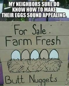 WAY better name for them than eggs!!! xD
