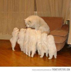 Mom, mom, mom, mom!