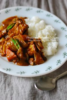 Atsu-age Curry 厚揚げカレー