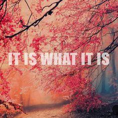 Esto es lo que es. #meditación #contemplación