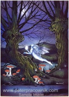 fairy, magic fairies, fairy magic, Fairy Magic Artist Peter Pracownik