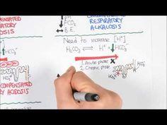 Acid-base disturbance (respiratory acidosis and alkalosis) - YouTube