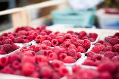Resveratrol is found in raspberries, but only in low quantities. A better way to access its healthy properties is through Bio-Resveratrol!   http://medvitalnutrition.com/bio-resveratrol/