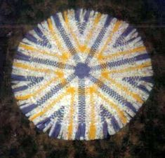 One of the finished rugs made by Gail and Clyde Martin - blue/white/yellow Loom Knitting Patterns, Knitting Tutorials, Free Knitting, Stitch Patterns, Rugs And Mats, Weaving Projects, Family Crafts, Wagon Wheel, Loom Weaving