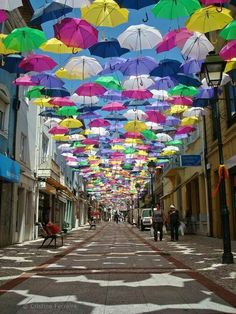 A colorful umbrellas graces the street of Portugal