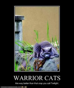 WARRIOR CATS ARE TWILIGHT! WE HAVE A BOOK CALLED TWILIGHT AND ITS WAY BETTER THAN THE THING YOU CALL A BOOK XD