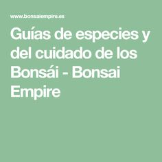 Guías de especies y del cuidado de los Bonsái - Bonsai Empire