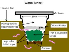 Build a Worm Tunnel Vermicomposting System