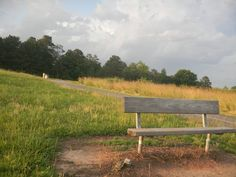Mulberry Park, Dacula, GA-My favorite place to run or catch up with friends as we walk together.