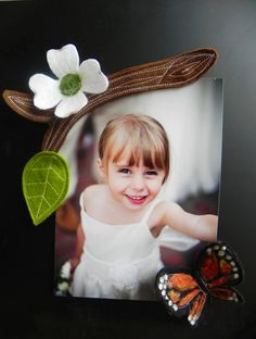 Butterfly Magnet Set by Amy Brand
