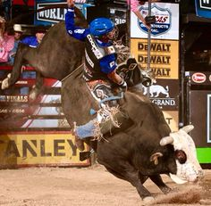Mick E. Mouse Rodeo Cowboys, Real Cowboys, Rodeo Events, Professional Bull Riders, Bucking Bulls, Rodeo Time, Cowboy Quotes, Bull Riding, Cowboy And Cowgirl