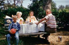 California Picnic II: 1959