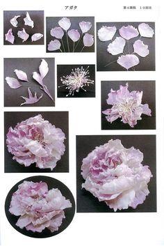 Рабочие тетради Сайоко Ясуда школы SOMEBANA   Японские книги по цветоделию.Обучающие материалы   ВКонтактi