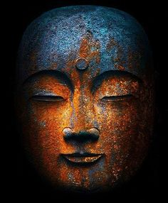 """""""One of the beautiful things about Buddhism is that it does not worship Buddha as a god or deity, but instead celebrates the Buddha as an example of a normal person like you and me who applied a good deal of discipline and gentleness to his meditation practice, and ended up opening his mind and heart in a very big way."""" Lodro Rinzler"""