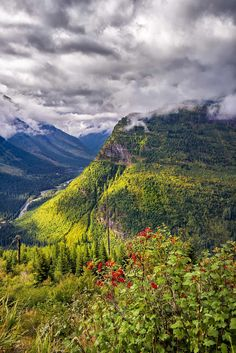 View from Going to the Sun Road - Visit Glacier National Park