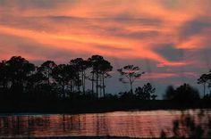 St. George Island State Park, one of our favorite camping spots!