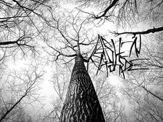 Interview with Ashen Horde Progressive Black Metal from L.A.