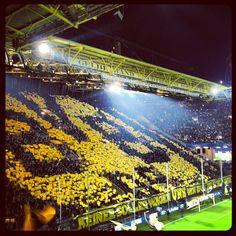 Signal Iduna Park in Dortmund Soccer Stadium, Soccer Fans, Football Stadiums, Football Tops, Football Is Life, Ultras Football, Signal Iduna, Derby, City Photo