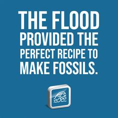The Flood provided the perfect recipe to make fossils. Marine Iguana, Marine Fish, Dinosaur Bones, Dinosaur Fossils, Sea Dinosaurs, University College Cork, Institute For Creation Research, Species Of Sharks, Western Michigan
