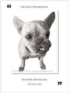 Life Is Short. Drink Good Wine  - Funny Birthday Card