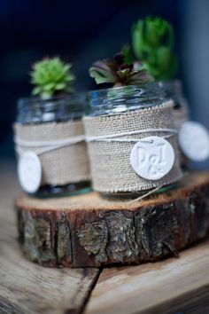centerpiece fun - little jars, wrapped burlap, twine. maybe at xmas with the baby food jars, burlap & twine i already have with votives inside, berries instead of wooden coin in pic tied on outside with the twine Davison Johnson Glass Jars, Mason Jars, Succulent Favors, Pots, Cactus Planta, Baby Food Jars, Unique Gardens, Burlap Ribbon, Jar Crafts