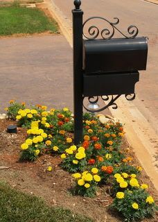 Decorate Your Mailbox With Vines, Shrubs and Flowers - Modern Mailbox On House, Mailbox Garden, Mailbox Landscaping, Landscaping Tips, Landscape Plans, Landscape Design, Garden Design, Mailbox Flowers, Mailbox Makeover