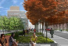 Medgar Evers College to Develop Crown Heights Street Into Verdant Campus Quad...