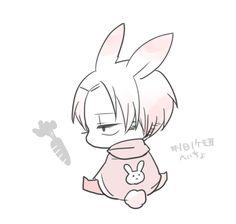 Bunny Levi // AoT