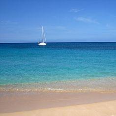 The Oahu Horizon
