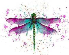 Watercolor dragonfly More