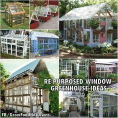 repurposed window green houses