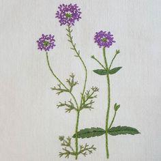 Verbena  #프랑스자수 #자수 #꽃자수 #꽃 #바느질#가리개#커튼#아오키카즈코 #정원꽃자수 #embroidery #sewing #handmade #needlework #flower