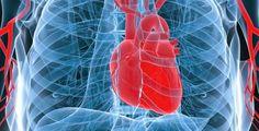 ΤΟ ΠΑΡΑΞΕΝΟ: Ο ρόλος του νερού στη καρδιακή προσβολή